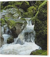 Healing Waters Wood Print