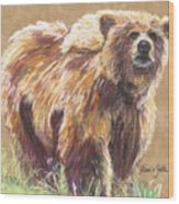 Healthy Brown Bear Wood Print