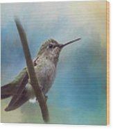 Hear Her Song - Hummingbird Art Wood Print