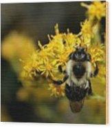 Heart Of The Bee Wood Print
