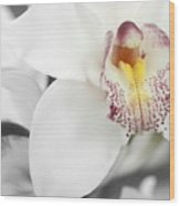 Heart Of The Orchid Wood Print