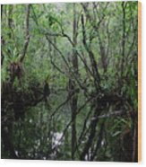 Heart Of The Swamp Wood Print