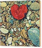 Heart On The Rocks Wood Print