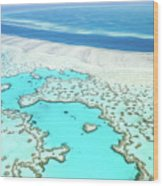 Heart Reef Wood Print
