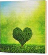 Heart Shaped Tree Growing On Green Grass Wood Print