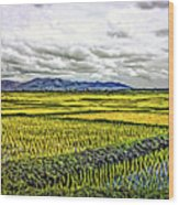 Heartland Oil Wood Print