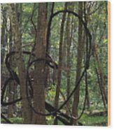 Hearts In The Woods Wood Print