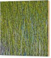 Heather Lake Grass Wood Print