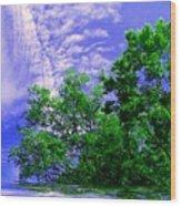 Heavenly Wood Print