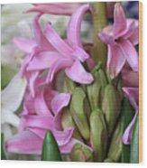 Heavenly Hyacinths Wood Print