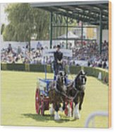 Heavy Horses Competition Wood Print