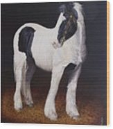 Heavy Stallion  Glin Fair Wood Print