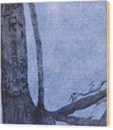 Hedden Park II Wood Print
