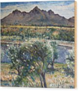 Helderberg Clearmountain Cape Town South Africa Wood Print