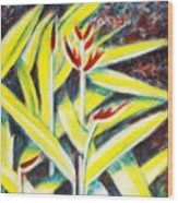 Heliconia 2 Wood Print