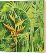 Heliconia 8 Wood Print