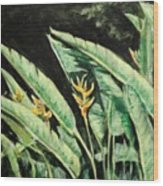 Heliconia Flower 7 Wood Print