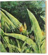 Heliconia Flowers 6 Wood Print