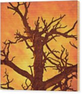 Hell Wood Print