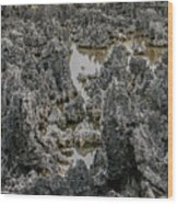 Hell - Grand Cayman Vertical Wood Print