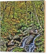 Hellbrook Cascades In Autumn Wood Print
