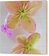 Hellebore Flower Art Wood Print