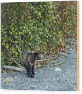 Hello Bear Wood Print