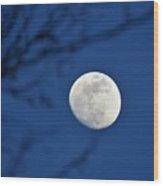 Hello Moon Wood Print