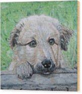 Hello Puppy Wood Print