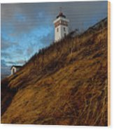 Helnaes Lighthouse Wood Print