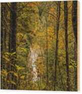 Helton Falls Through The Leaves Wood Print