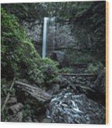 Hemlock Falls Wood Print