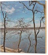 Hempstead Harbor Through The Trees Wood Print