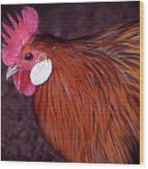 Hen Chicken, Digital Paint Wood Print