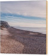 Hengistbury Head And Beach Wood Print