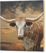 Henly Longhorn Wood Print by Robert Anschutz