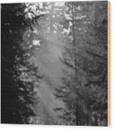 Her Majesty Wood Print