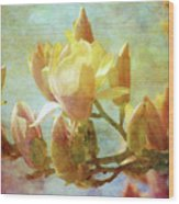 Herald Spring 8878 Idp_2 Wood Print