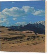 Herard Past The Dunes Wood Print