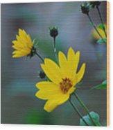 Herb Wood Print