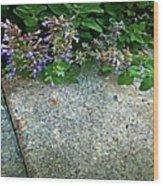 Herb Garden Walkway Wood Print