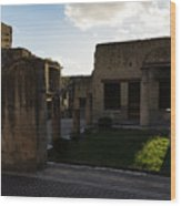 Herculaneum Ruins - Mosaic Tile Streets And Sun Splashes Wood Print