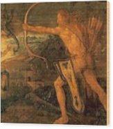 Hercules Kills The Symphalic Bird 1520 Wood Print