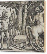 Hercules Shooting The Centaur Nessus Wood Print
