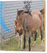 Herd Of Horses On A Street Wood Print