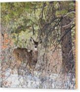 Herd Of Mule Deer In Deep Snow Wood Print