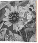 Here I Am In Black And White Wood Print