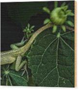 Here Lizard Lizard Wood Print