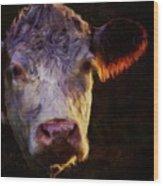 Hereford Cow Wood Print