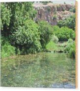 Hermon Stream Nature Reserve Wood Print